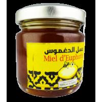 Miel 100% Pur Euphorbe 100 g